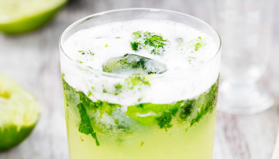 Mint Fizz med gin, mynta och lime.
