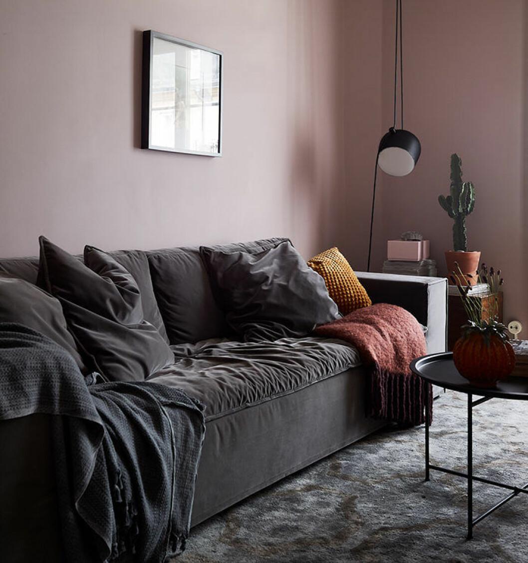 Mysigt vardagsrum med mörka färger