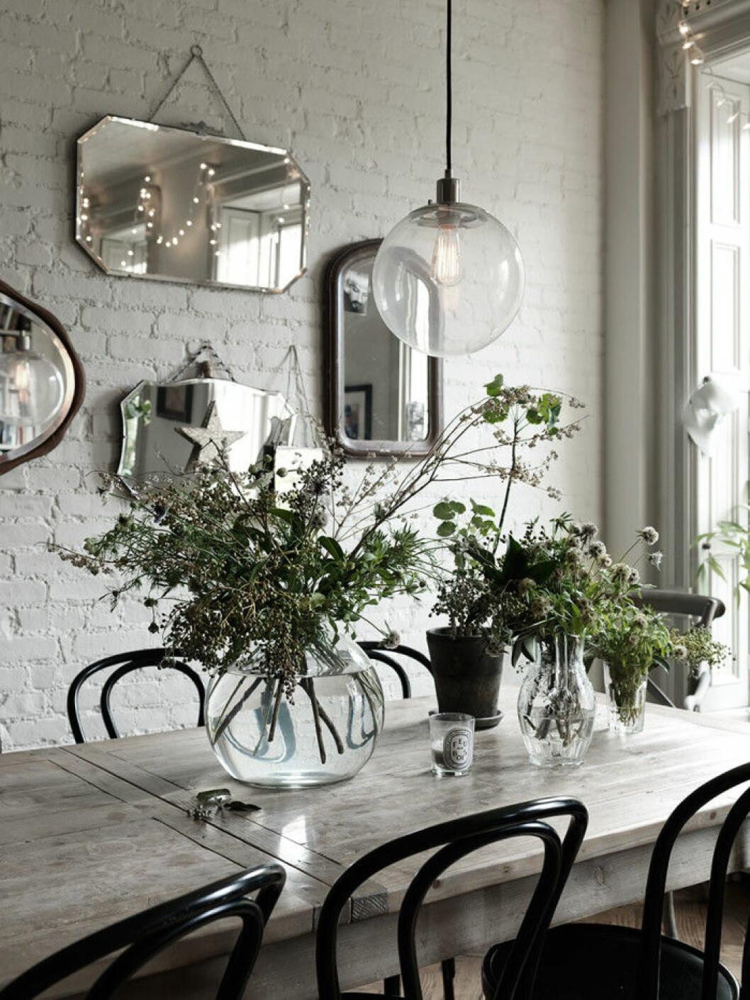 Mycket växter på matsalsbordet.