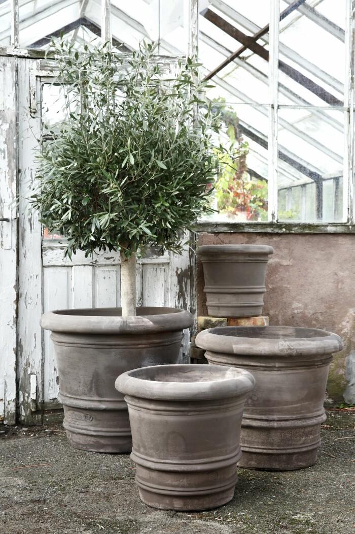 Odla på liten yta - experternas tips Elle Decoration Elin Lannsjö krukor Begs potter
