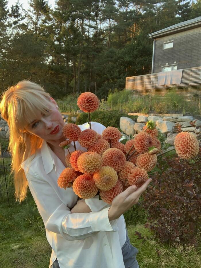 Odla på liten yta - experternas tips Elle Decoration Emily Bratt dahlior