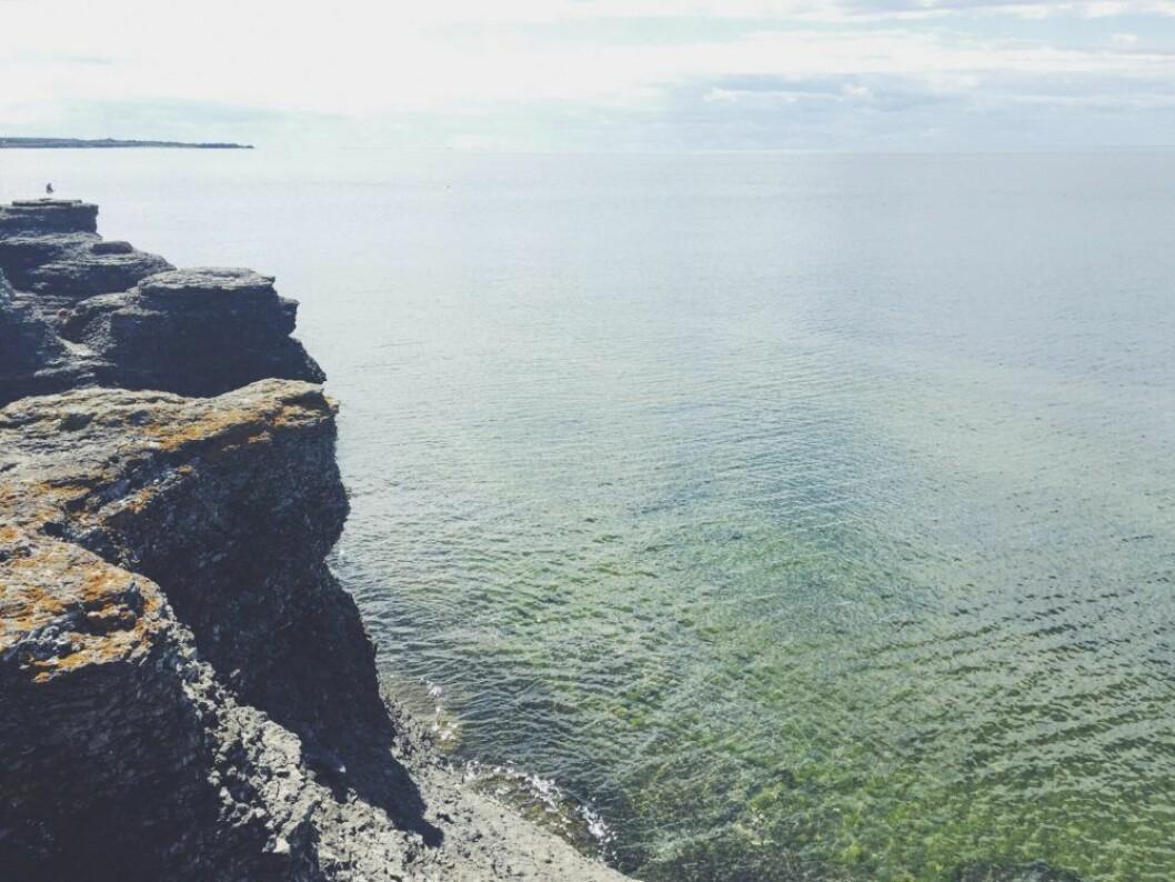 Byerums raukar på Öland