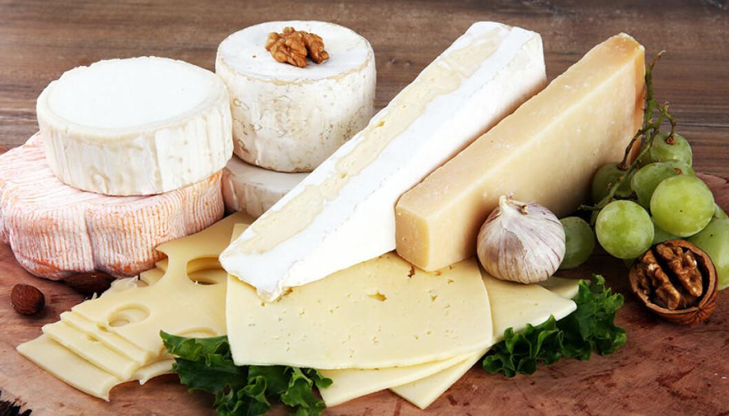 Ost är beroendeframkallande, enligt forskare.