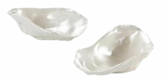ostronskålar