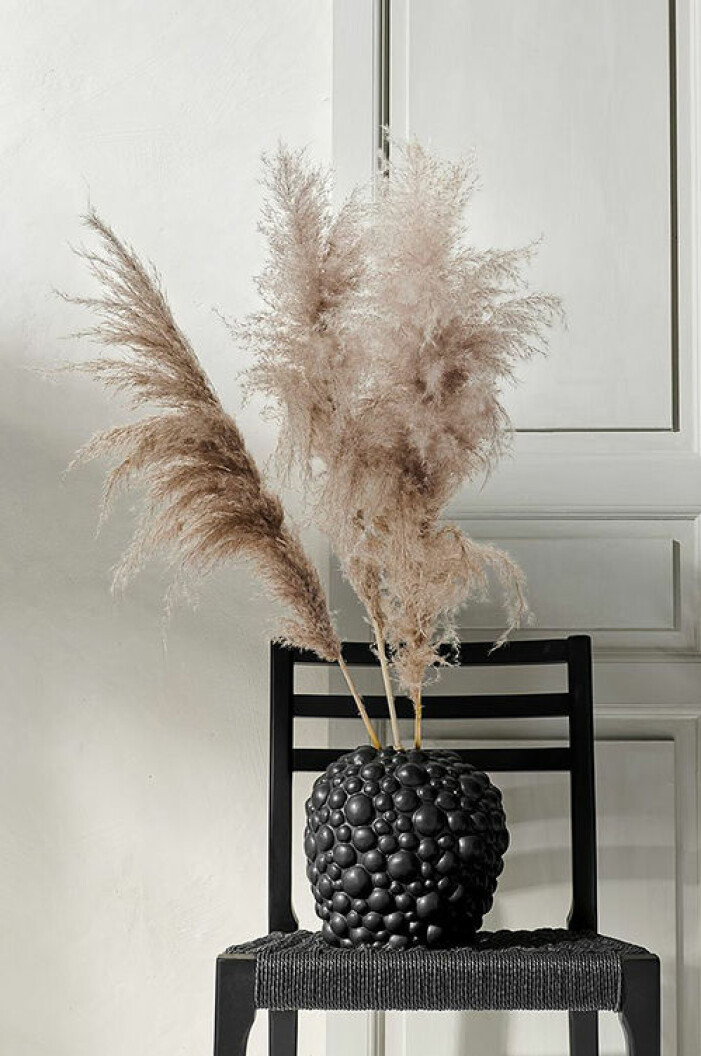 pampasgräs från house of flowers