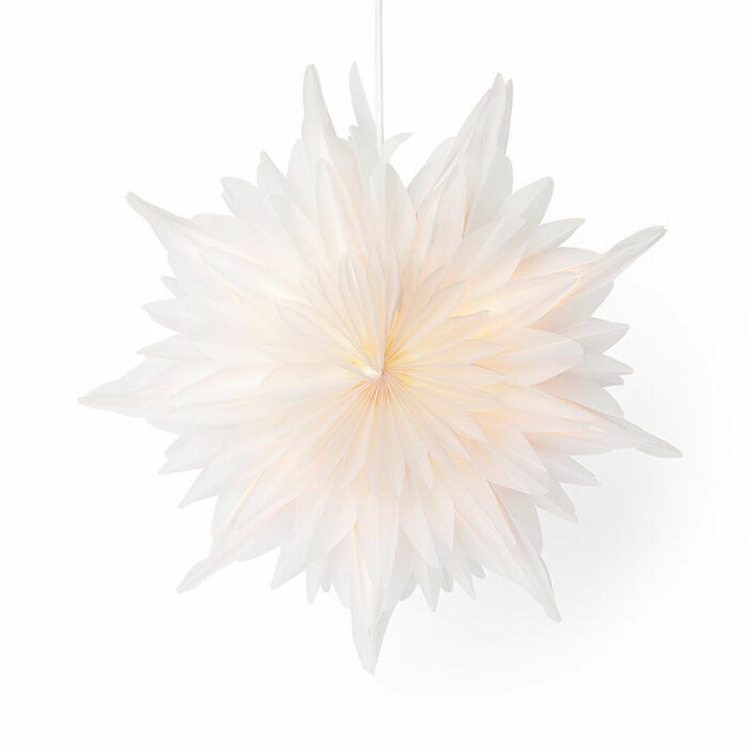 Vit pappersstjärna från Åhléns