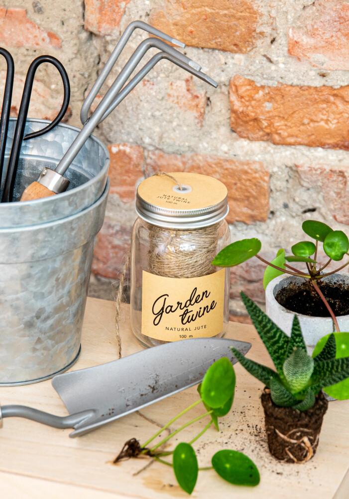 Planteringsnyheter hos Lagerhaus