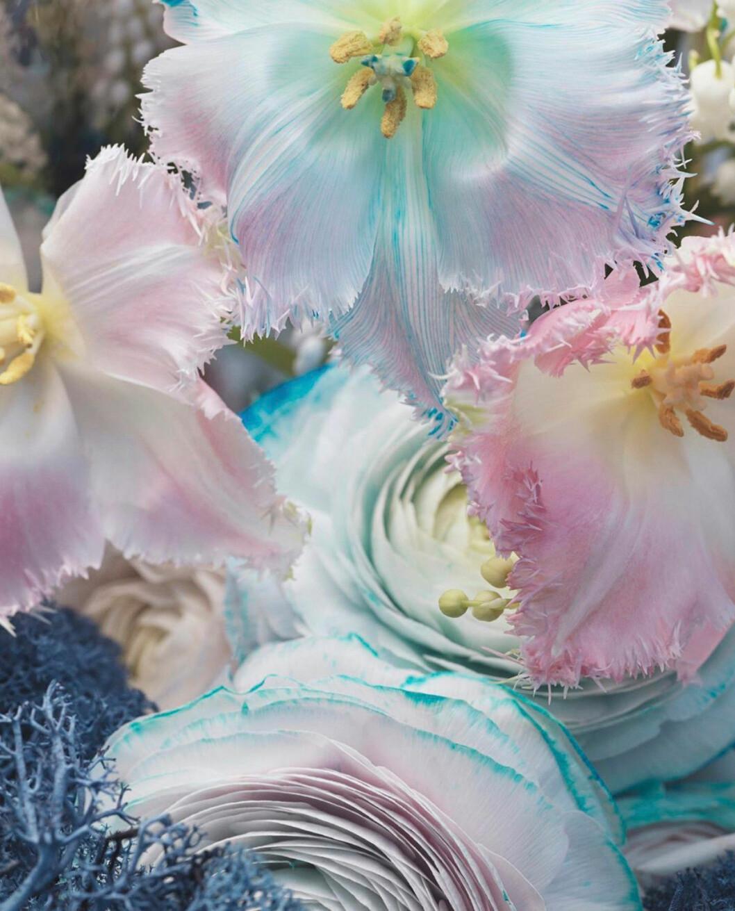 Poppykalas Thilde Maria Haukohl Kristensen blommor