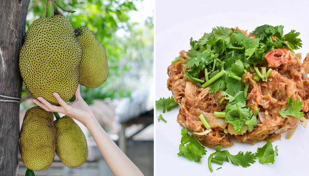 Pulled jackfruit är ett bra alternativ till kött.