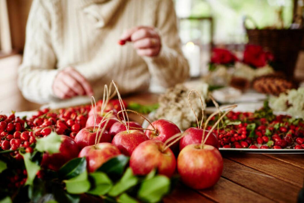 Äpplen, mossa och rönnbär