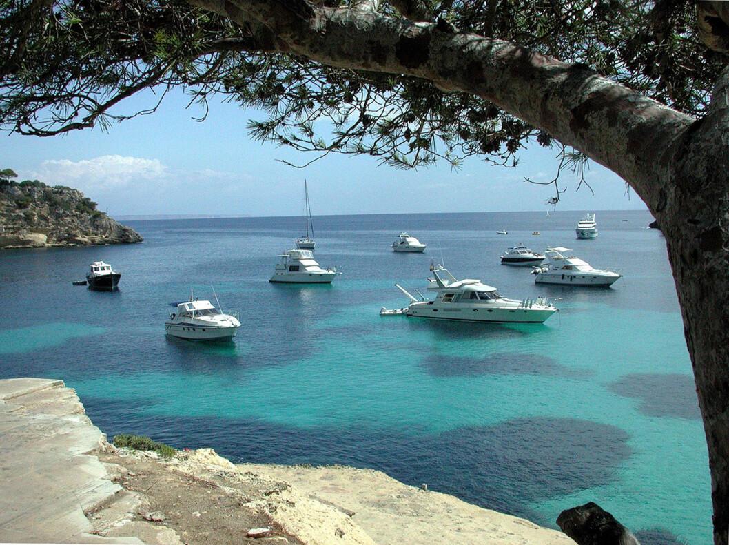 Festivalkryssningsfartyget Anchored lägger till i Palma.