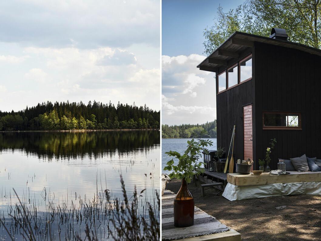 Stedsans in the woods ligger vid Hallsjön i Halland.