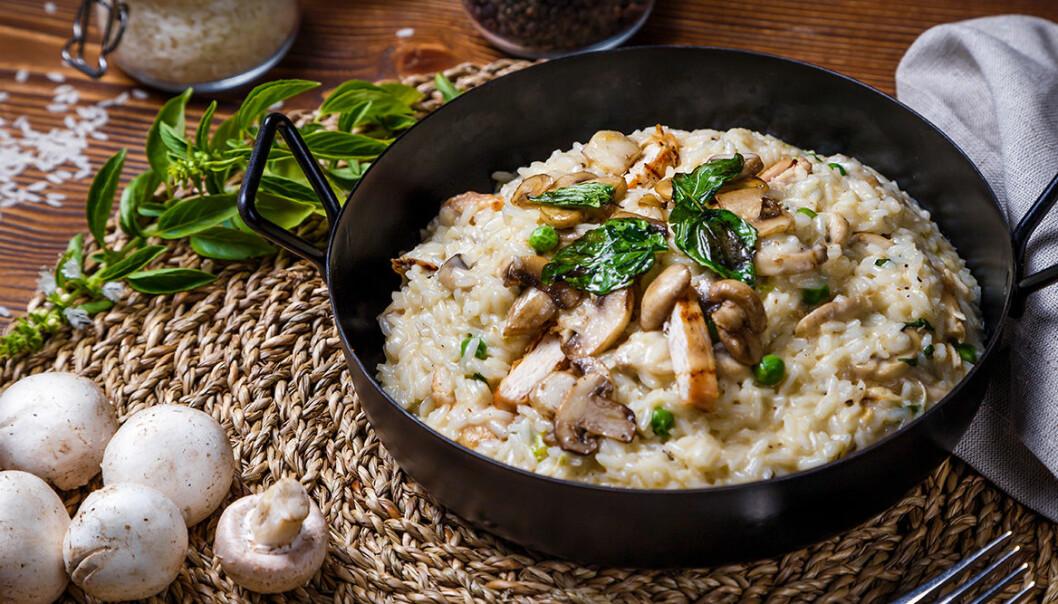 Krämig risotto med kyckling. Svamp är också gott till.