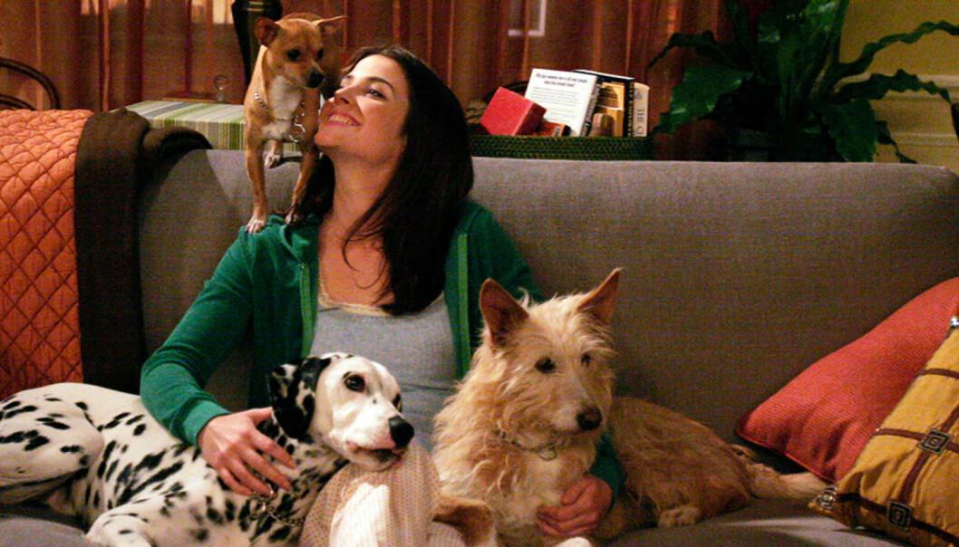 robin i how i met your mother med sina hundar