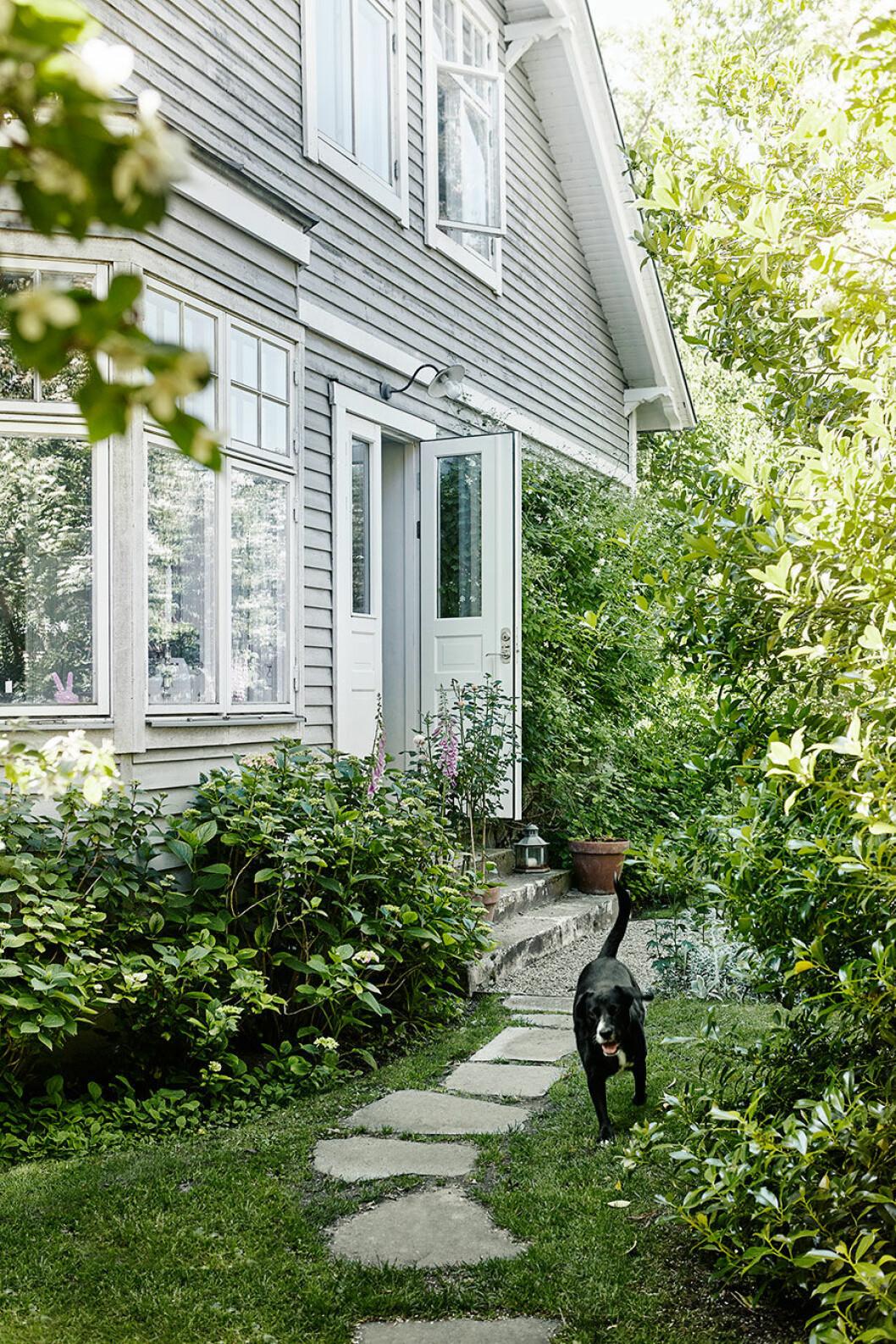 Rosengarden_garden_tradgard_exterior_gray_house_Foto_Petra_Bindel