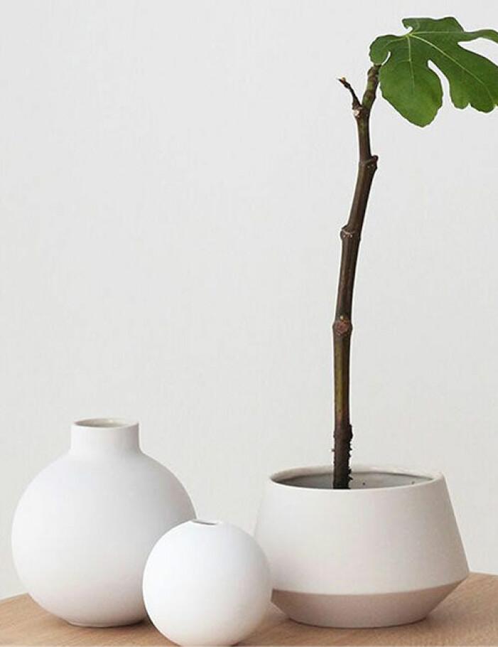 rund vas cooee design