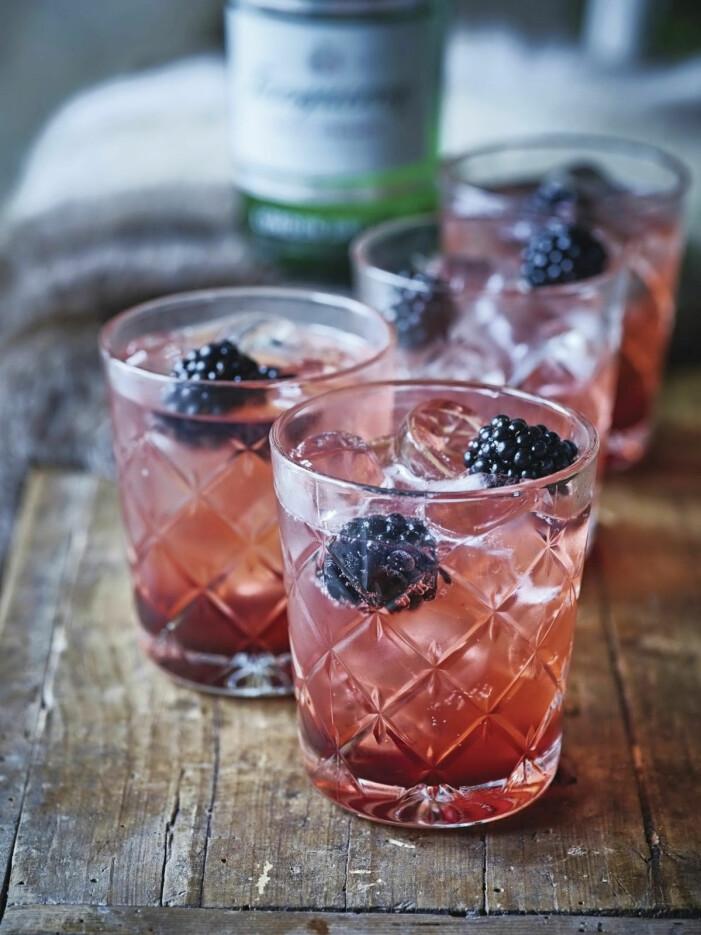Så gör du björnbärs gin- och tonic