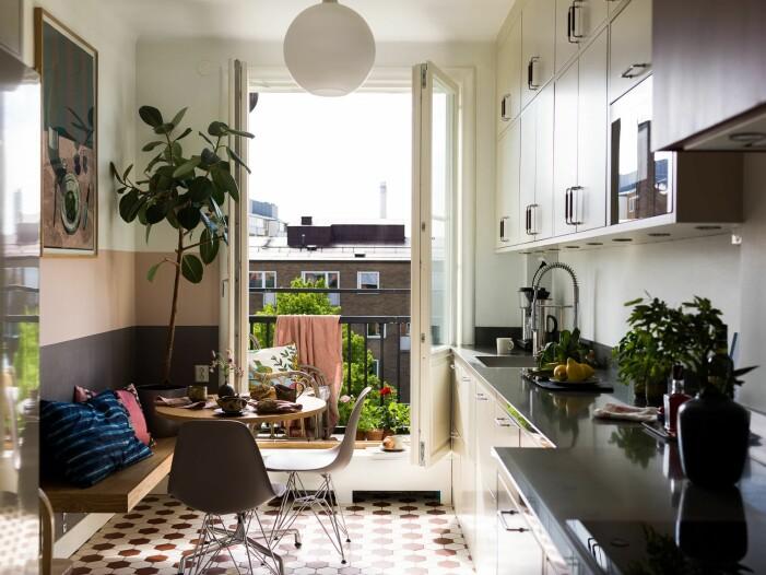Så inreder du snyggt med växter hemma