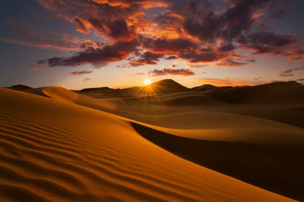öken med solnedgång