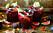 Sangria med fikon, granatäpple och bär.