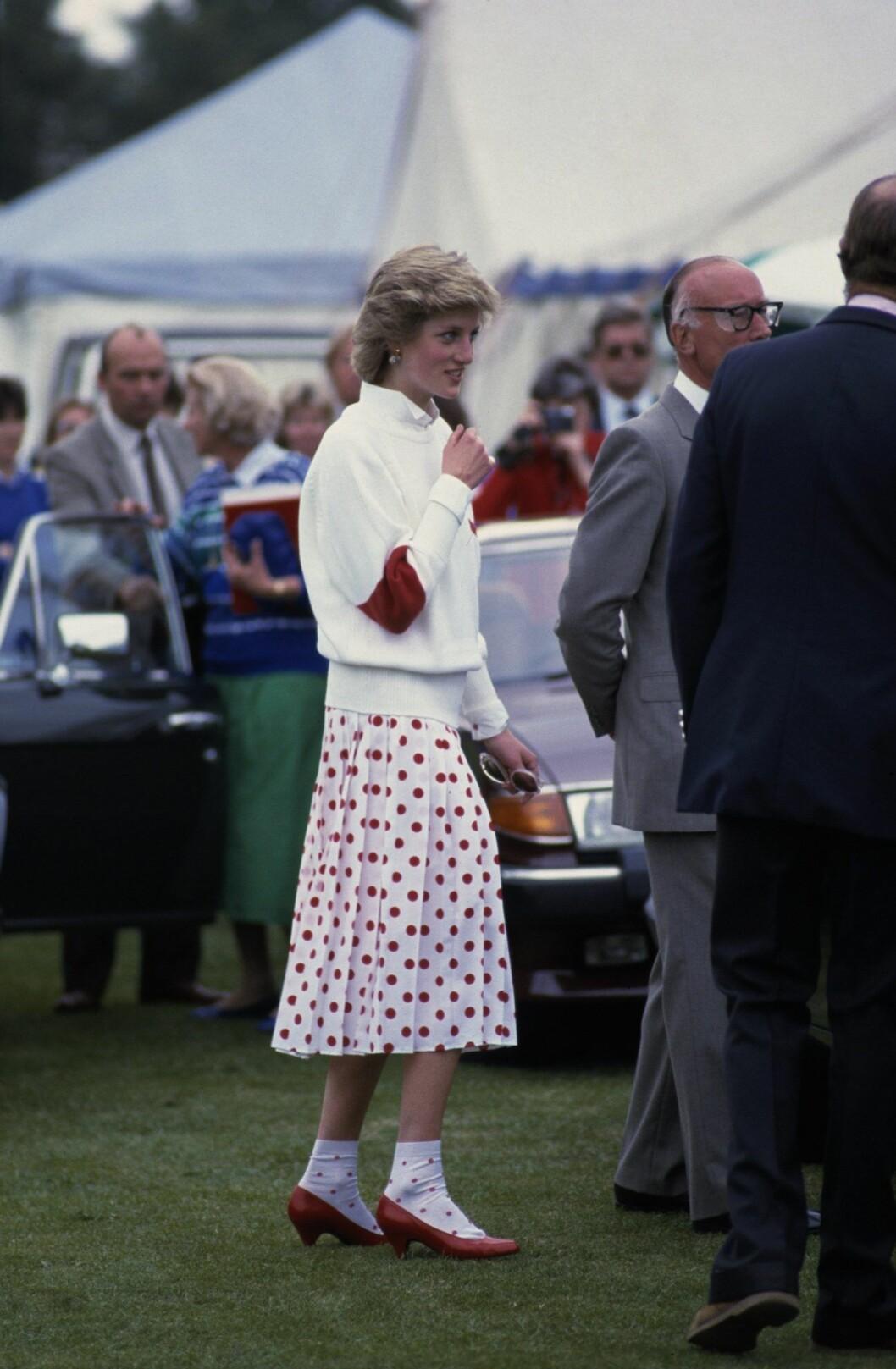 Prinsessan Diana i prickigt