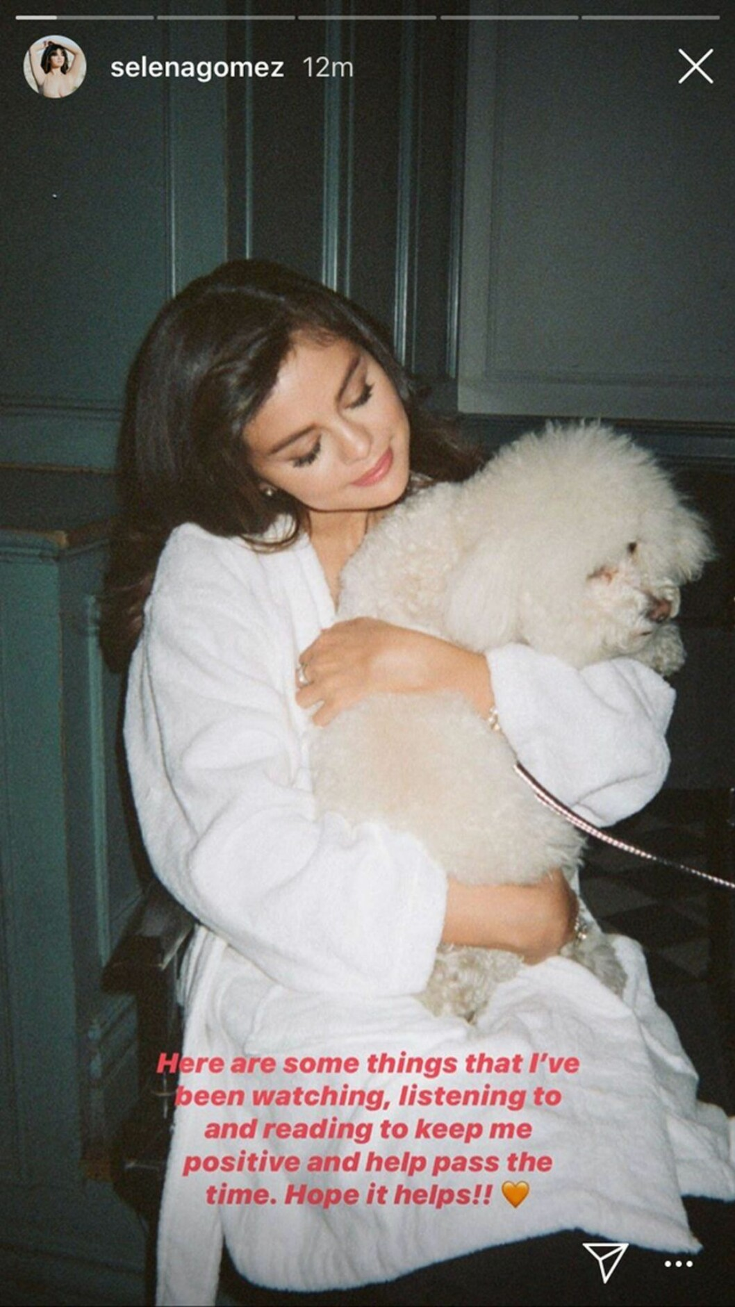 Skärmdump från Selena Gomez Instagram