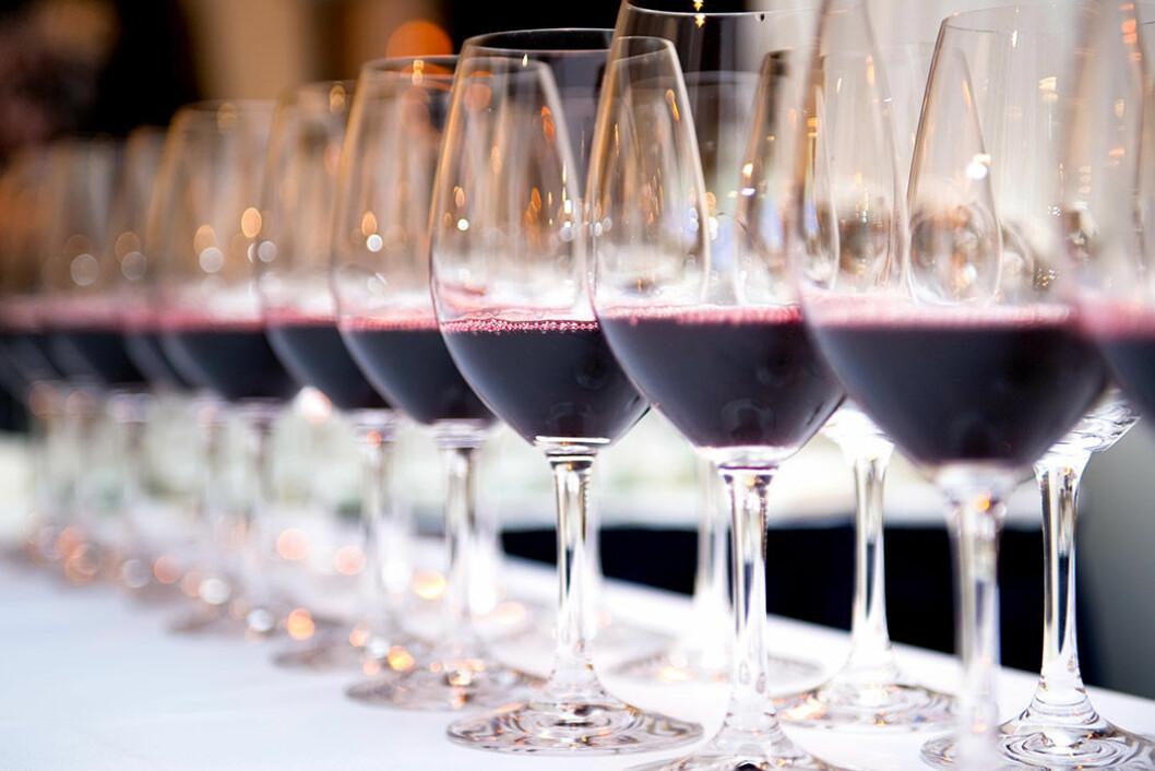 Prova vin på Senses Wine Fair. Foto: IBL