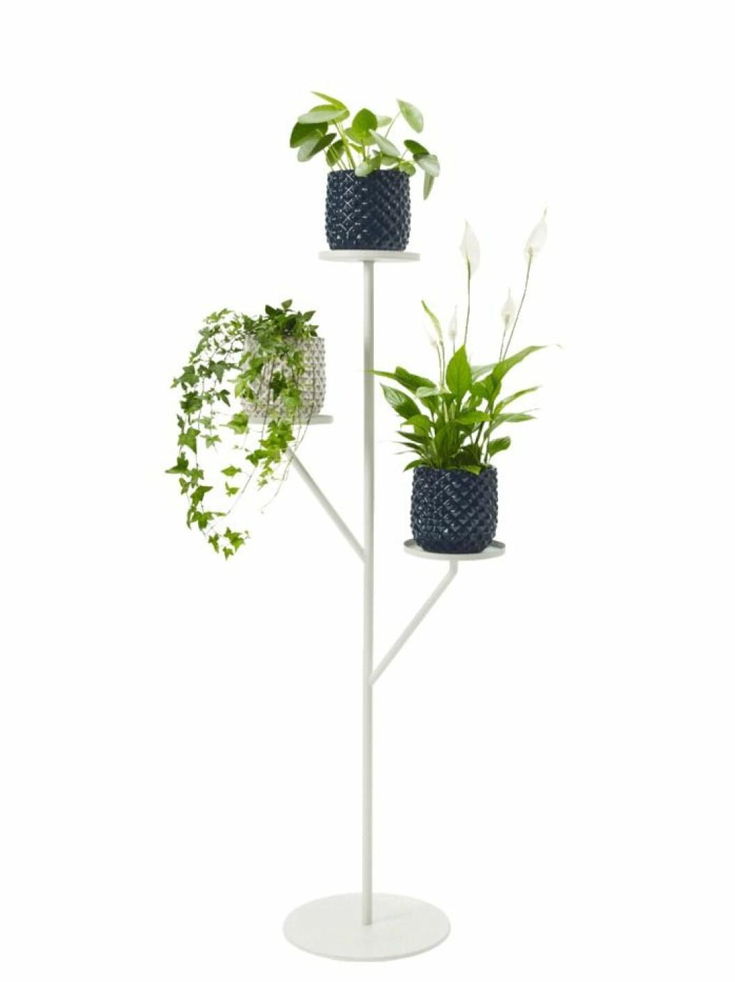 Fin piedestal som ger växterna ett extra lyft