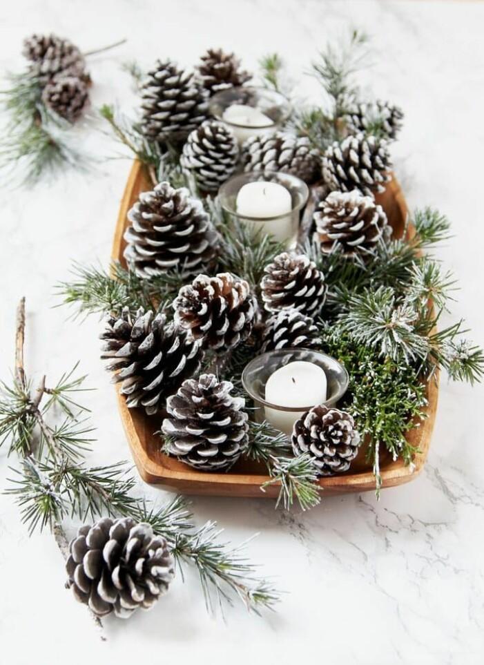 Skapa ett vintrigt stilleben med kottar