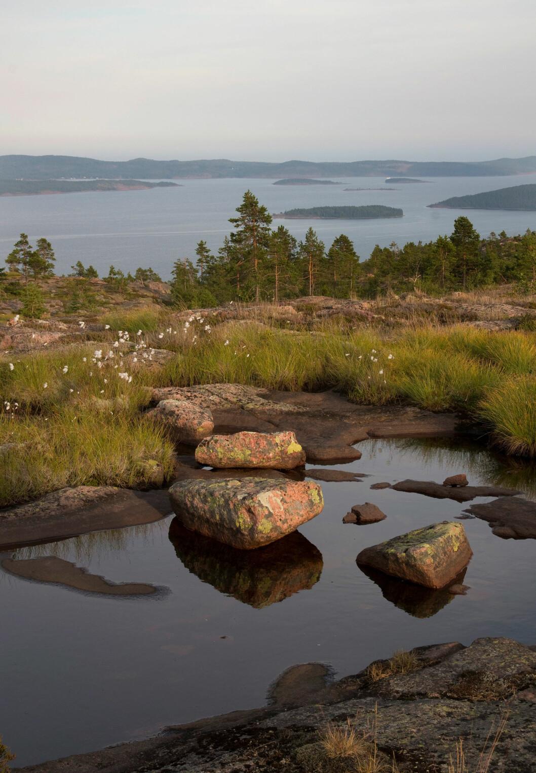 Utsikt från Skulebergets nationalpark