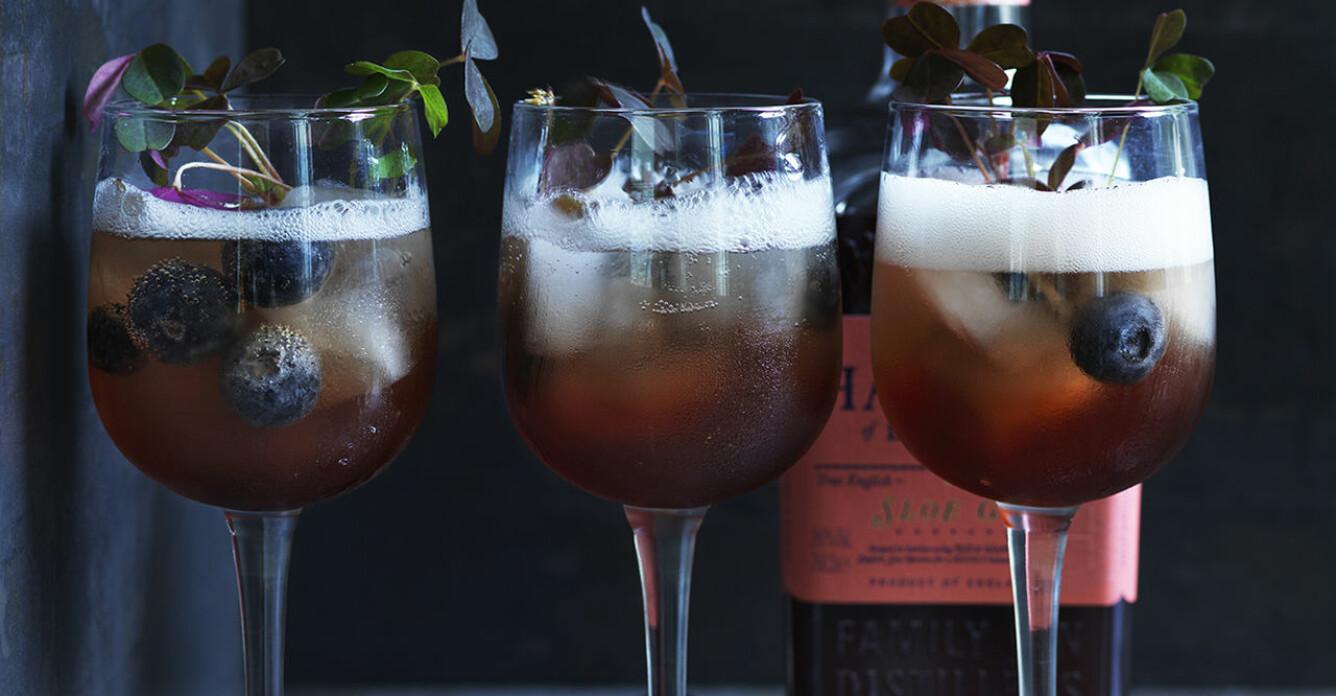 Recept på lyxig sloe gin spritz