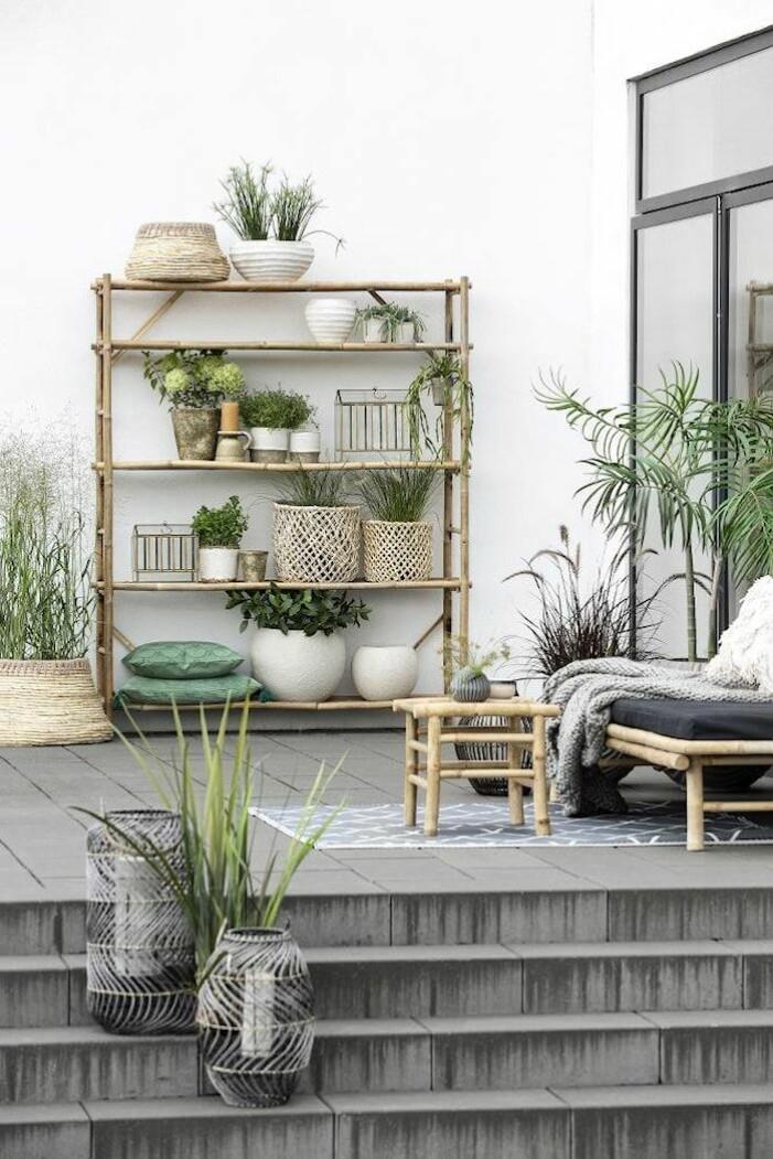 Små växthus till balkongen