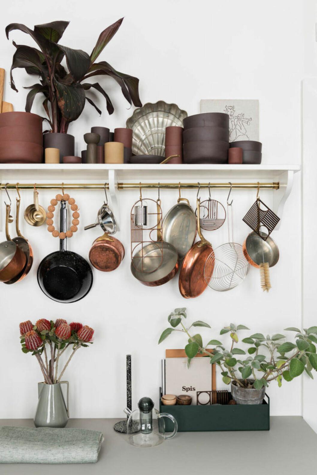 Trendigt i köket: Växter och snäckformer