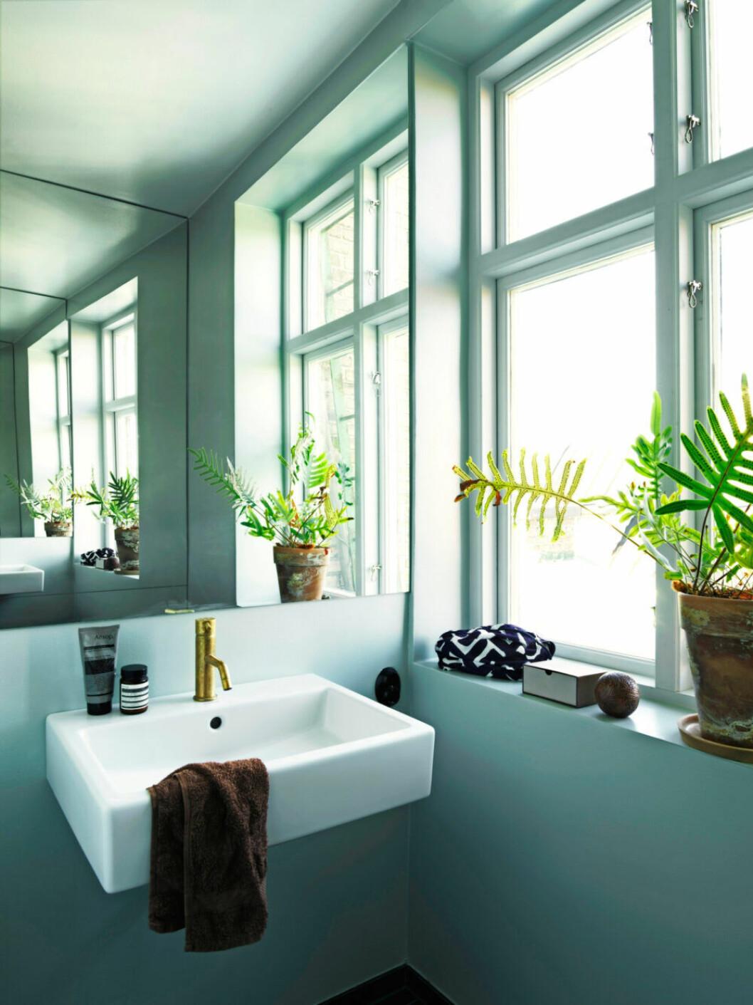 Badrummet går i ljusgröna toner med växter längs fönstret hemma hos Sofia Linfeldt i Skåne