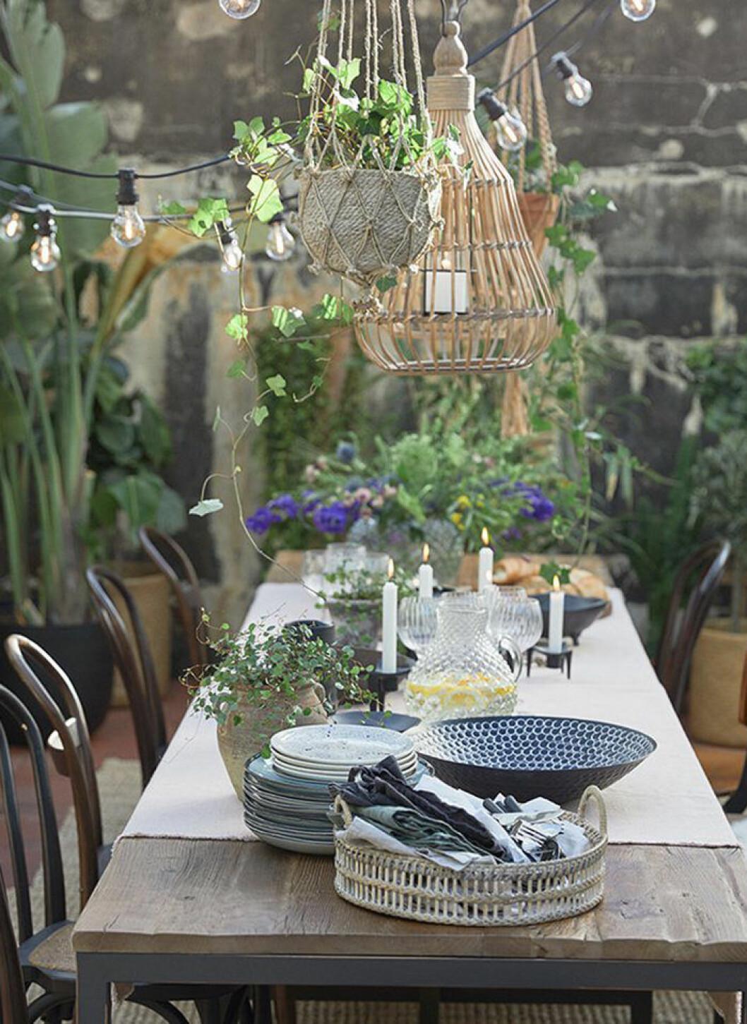 Dekorera med lampor, amplar och ljusslingor på sommarens fester
