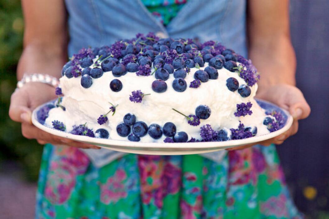 Sommartårta med lavendel och vit chokladkräm, lemon curd och blåbärssylt.