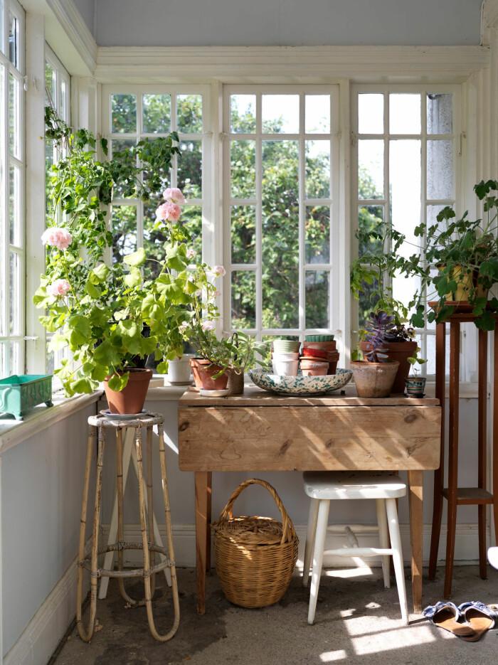 sommarhus på Gotland – hemma hos Elsa Billgren