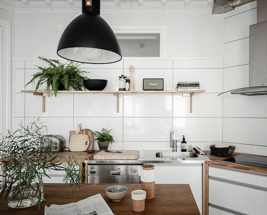 Somrigt kök med mycket grönväxter