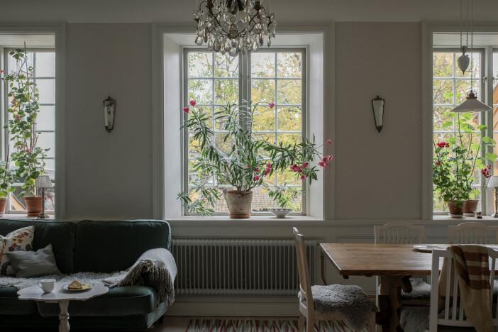 spöjsade fönster vetter mot innergården