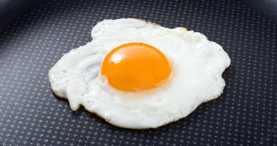 Ett perfekt stekt ägg. Foto: IBL