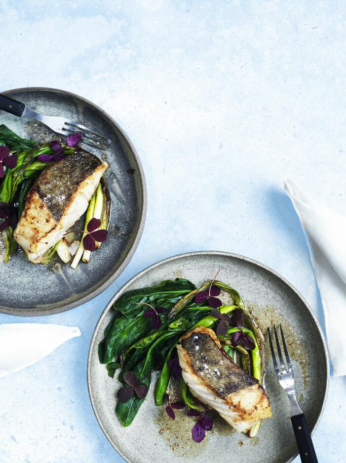 Laga stekt torskrygg med salladslök och mangold