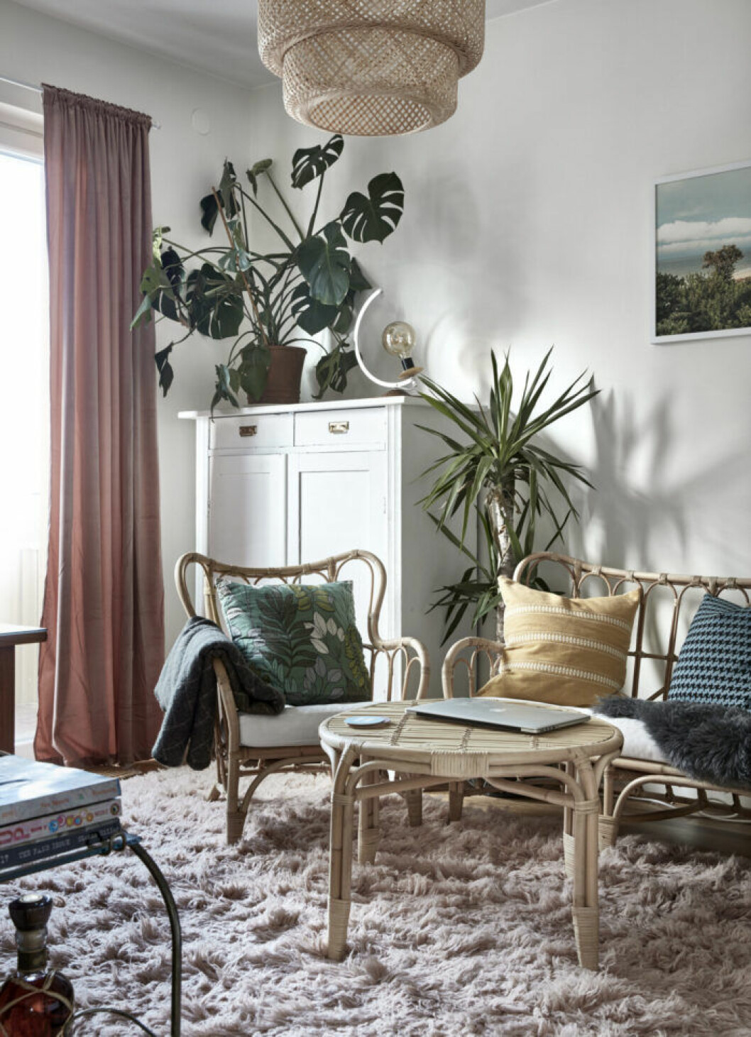 Växter och rotting möter varandra i vardagsrummet