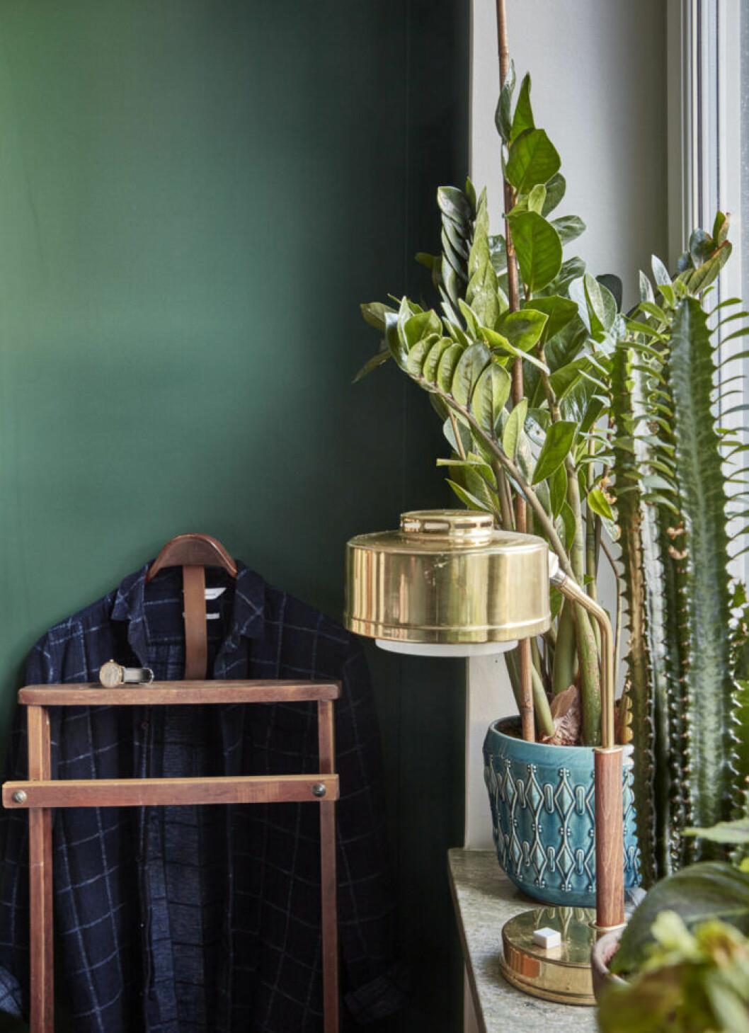 Växter i krukor på fönsterbrädan i sovrummet