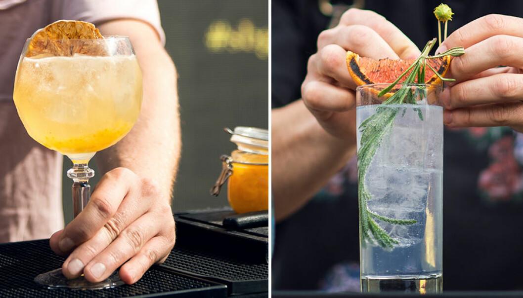Sveriges bästa Gin & Tonic – så gör du!