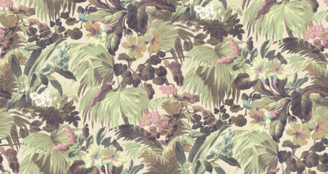 Palmer, blommor och andra växter syns i tapeten Papyrus från House of Hackney
