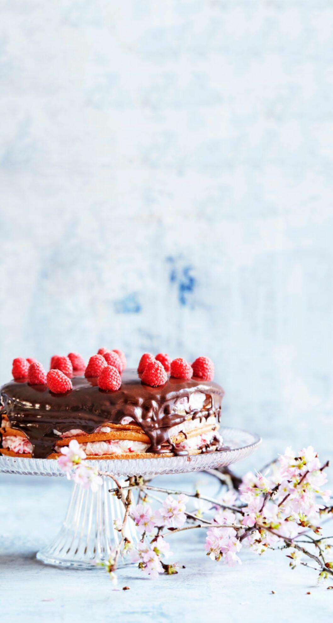 Tårta med hallonskum och choklad