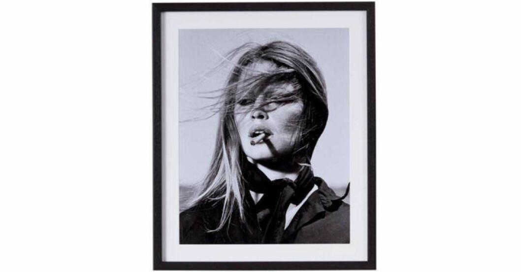 Tavla med med Brigitte Bardot