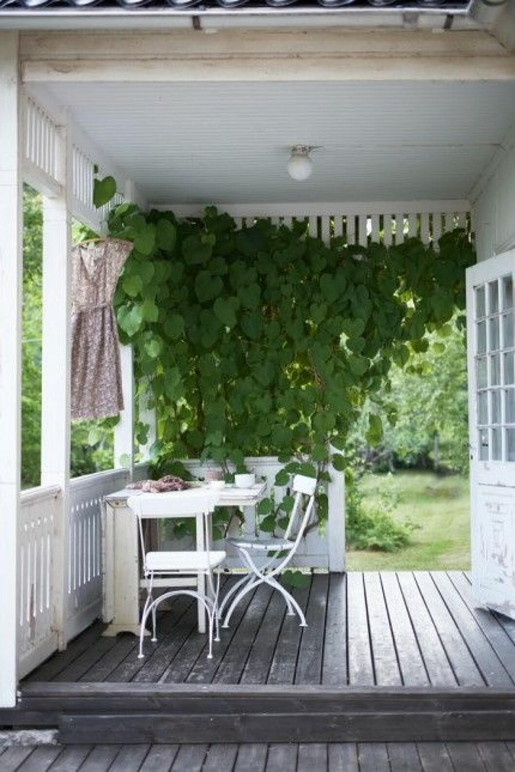Klassisk veranda med litet köksbord på
