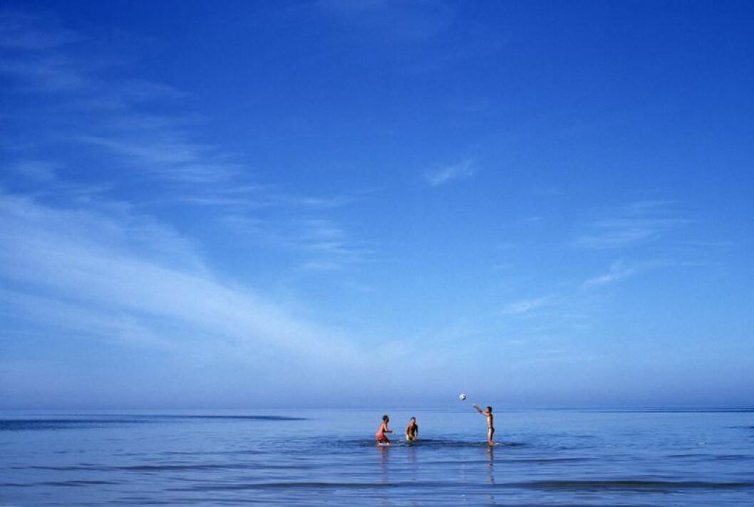 Tofta strand på Gotland.
