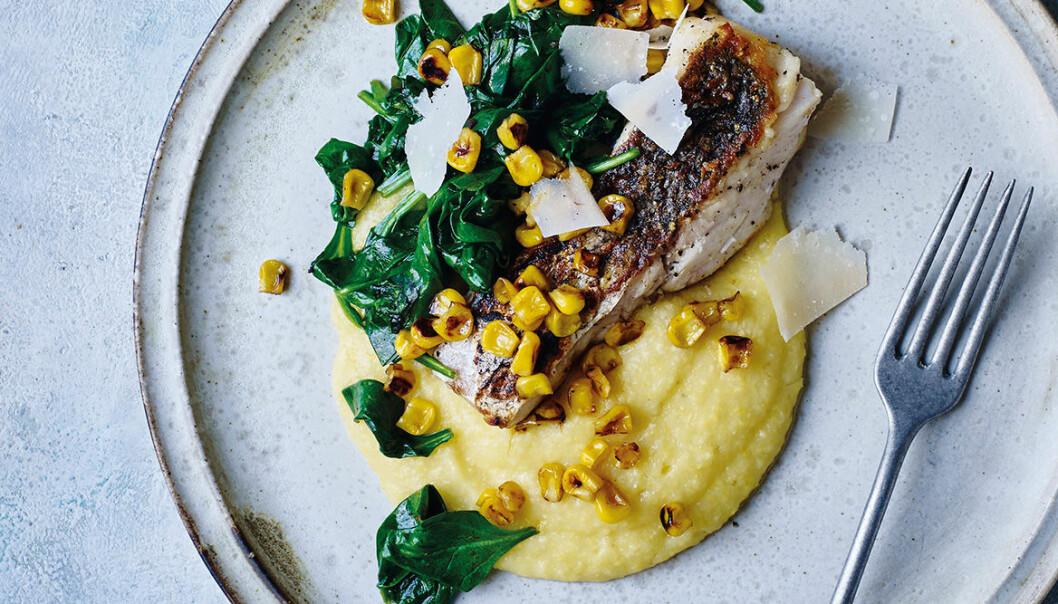 Sprödstekt torsk med polenta och sotad majs.